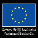 Avrupa Birliği Logo 400x300px